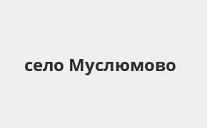 Справочная информация: Банкоматы Ак Барс Банка в селе Муслюмово — часы работы и адреса терминалов на карте