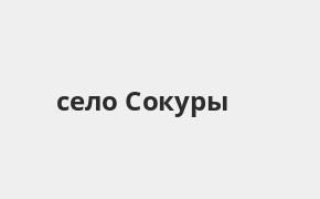 Справочная информация: Банкоматы Ак Барс Банка в селе Сокуры — часы работы и адреса терминалов на карте